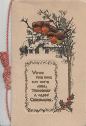 WITHIN YOUR HOME MAY MIRTH ABIDE, THROUGHOUT A HAPPY CHRISTMASTIDE, 3 birds of happiness perhaps English robins,perched