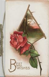 BEST WISHES in gilt below right, red rose & bud & evening rural inset framed with rose stems