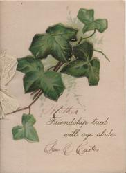 FRIENDSHIP TRIED WILL AYE ABIDE below ivy