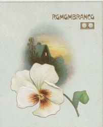 REMEMBRANCE in gilt top, small rural inset , white & brown pansy below