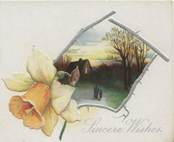 SINCERE WISHES in silver, irregular thorny silver bordered evening rural inset, daffodil front left