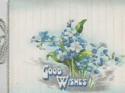 GOOD WISHES in white below forget-me-nots, background of pale blue & white stripes