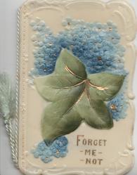 FORGET ME NOT in gilt below larger ivy leaf above forget-me-nots