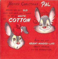 MERRY CHRISTMAS, PAL 2 rabbit head's on red, each wears red cap, WHEN WE GET ...below