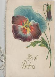 BEST WISHES in gilt below multicoloured pansy
