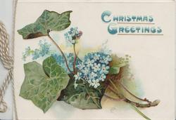 CHRISTMAS GREETINGS in blue over forget-me-nots & ivy