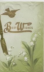 BEST WISHES in gilt above lilies-of-the-valley, gilt bird-of-happiness above