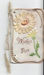 WISHES TRUE daisies above