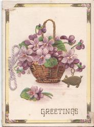GREETINGS violets in basket
