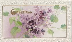 GREETINGS in gilt above violets, embossed white marginal design
