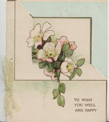 TO WISH YOU WELL AND HAPPY in gilt, below pale pink wild roses