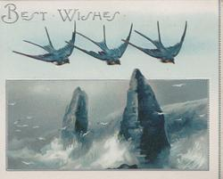 BEST WISHES in silver, 3 bluebirds of happiness fly front over seascape with 2 rocky pinnacles