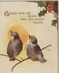 GOLDEN DAYS BE YOURS AND JOY FILLED HOURS over 2 bluebirds of happiness perched, holly top right