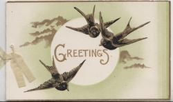 GREETINGS in gilt on circular white plaque, 3 birds of happiness fly