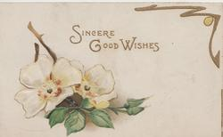 SINCERE GOOD WISHES in gilt above 2 white wild roses & buds