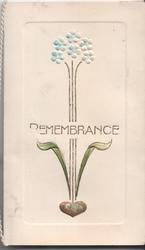 REMEMBRANCE forget-me-nots