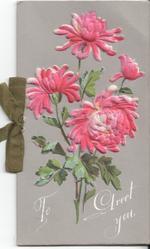 TO GREET YOU four chrysanthemums
