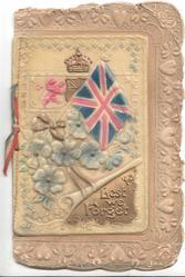on celluloid front LEST WE FORGET in gilt below flag & Royal insignia, brown embossed marginal floral design