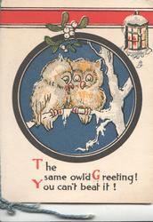 THE OWL'D GREETING! YOU CAN'T BEAT IT!, 2 stylised owls perched in snowy tree under mistletoe & lantern