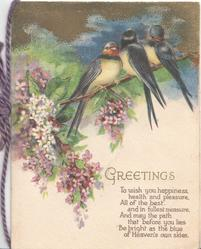 GREETINGS in gilt 3 blue birds of happiness perched on lilac bush, verse below
