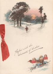 AGLOW WITH THE WARMEST OF WISHES above 3 robins perched below winter scene with person on path