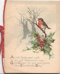 AN OLD FASHIONED WISH.... below, holly & English robin right, in front of snowy wood