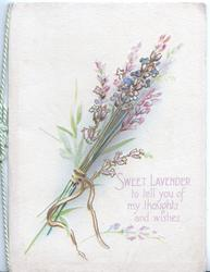 SWEET LAVENDER TO TELL YOU OF MY THOUGHTS AND WISHES below lavender tied by yellow ribbon
