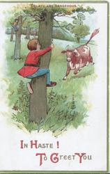 IN HASTE! TO GREET YOU boy chased by bull climbs tree, proverb