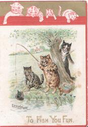 TO FISH YOU FUN in gilt below 3 cats fishing, one has caught an old boot, 4 cats in pink above