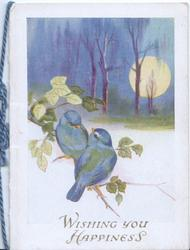 WISHING YOU HAPPINESS below two perched bluebirds of happiness, moonlit scene, trees back