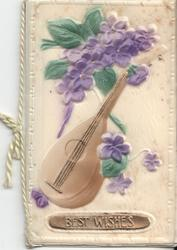 BEST WISHES celluloid cover, stringed instrument and violets