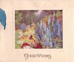 GOOD WISHES multicoloured flowers & tall blue delphiniums in front of wall on right