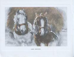LAND WORKERS pair of cart horses in harness pulling front