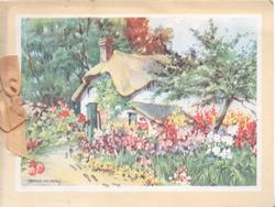 no front title, thatched cottage with multicoloured flowers on either side of path
