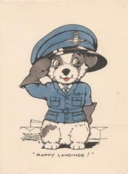 "HAPPY LANDINGS!"" personised puppy in RAF uniform salutes standing in front of distant airfield"