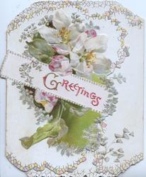 GREETINGS in gilt & red on white plaque set in perforated design over white apple blossom & leafy design