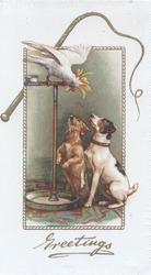GREETINGS in gilt below inset parrot on perch addresses 2 terriers seated below looking up from below, whip above