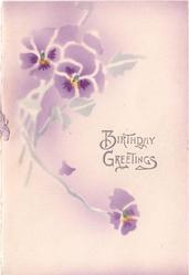 BIRTHDAY GREETINGS opt. in grey 3 stenciled, handpainted purple pansies