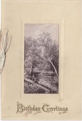 BIRTHDAY GREETINGS in gilt below rural inset scene, couple stands on small bridge beside waterway with swans, trees in background