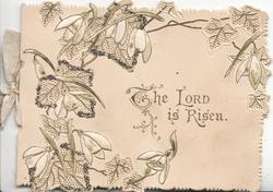 THE LORD IS RISEN below stylised snowdrops & ivy