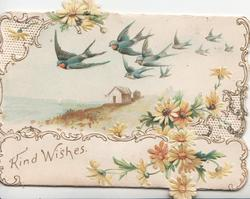 KIND WISHES on narrow bottom flap below 9 swallows, rural, yellow daisies around