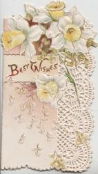 BEST WISHES in gilt on cream inset among daffodils, complex perforated marginal design right, embossed