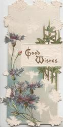 GOOD WISHES  on plaque above & beside blue cornflowers