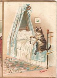 ALL GOOD WISHES(hidden), cat on bed holds up mouse by tail to show it to cat sitting up on floor