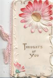 THOUGHTS OF YOU in gilt, pink & white daisy above, gilt marginal design