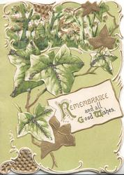 REMEMBRANCE AND ALL GOOD WISHES(R, G & W illuminated) on white plaque below cascades of ivy, green background & top perforated design