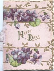 HAPPY DAYS In gilt on pink plaque between violets above & below violets, designed floral margins