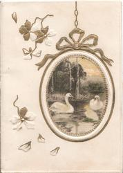 no front title, oval inset, gilt & white borders, 2 swans swimming, rural inset