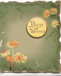 BEST WISHES in gilt on small circular yellow plaque, white daisies with orange centres above & below, dark green background