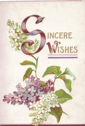 SINCERE WISHES(illuminated), white & purple lilac, white background